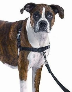 Premier Gentle Leader Easy Walk Harness for Dogs, All Sizes