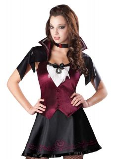 Teen Junior Girls Goth Trendy Vampire Halloween Costume