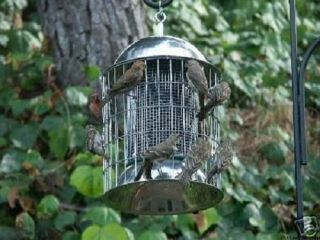 SQUIRREL PROOF TRASH BIRD STOPPER WILD BIRD FEEDER