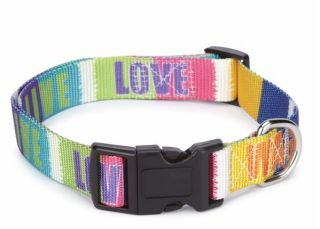 Zack & Zoey Inspirational Nylon Dog Collar Tie Dye Love