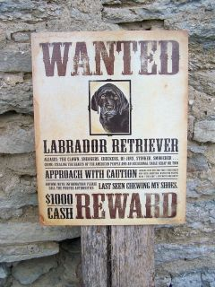 Style Retro Metal Sign Wanted Labrador Dog Ad Home Wall Decor Gift 16