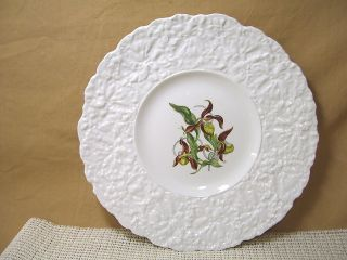 Royal Cauldon China Woodstock Pattern 9 1/4 Luncheon Plate Ladys