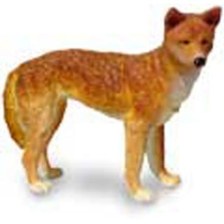 Dingo   Science & Nature Australia vinyl miniature toy animal