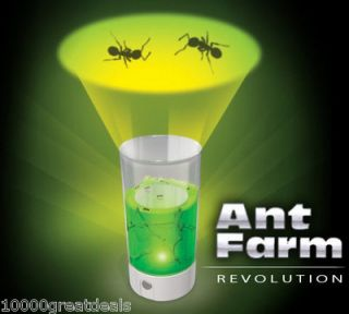 Ant Farm Revolution Insect Bug Art 360° Gel Habitat by Uncle Milton