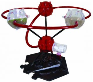 Ant O Sphere 4 Pod Wild Science Habitat Insect Bug Farm Colony Kit