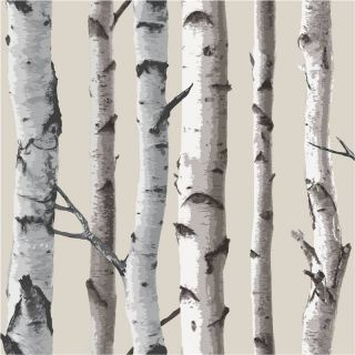 / Cream   FD31051   Birch Tree Forest Woods   Fine Decor Wallpaper