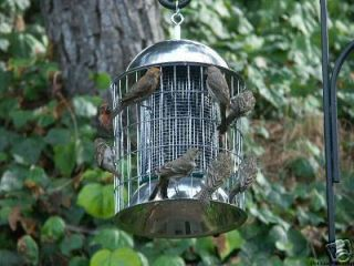 Squirrel Proof Super Steel Wild Bird Feeder