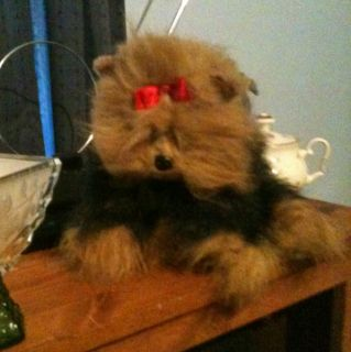 Ty Beanie Baby Yappy Yorkie Yorkshire Terrier Dog 97 Retired Stuffed