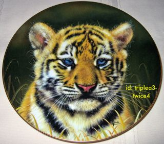 Princeton Gallery Cubs Of The Big Cats TIGER CUB Portrait Plate By Qua