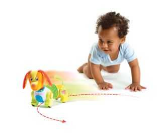 Tiny Love Follow Me Fred Puppy Dog Development Toy BN