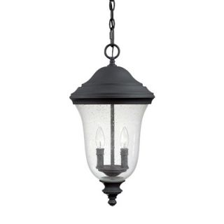 Capital Lighting Dawson Two Light Outdoor Hanging Lantern in Black