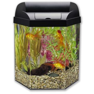 Eclipse Hexagon 5 Gallon Fish Tank Aquarium w Filters Food Rocks More