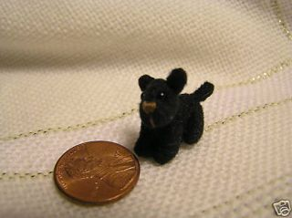 World of Miniature Bears Toto 3 4Mini Dog Black Tiniest