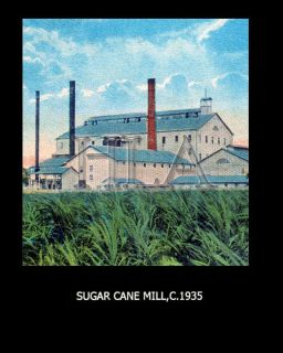 Hawaii Plantation Art Sugar Cane Mill 3214