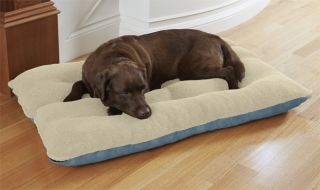 Memory Foam Futon Dog Bed / Large Dogs 70 100 Lbs., Slate Blue,