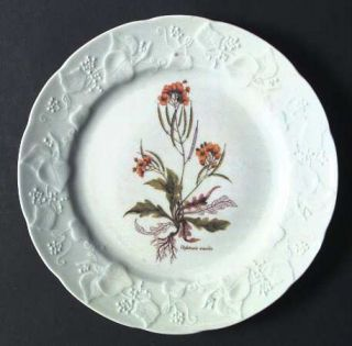 Dansk Ivy Accent Luncheon Plate, Fine China Dinnerware   Embossed Rim,Various Fl
