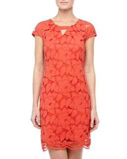 Floral Lace Cap Sleeve Dress, Poppy
